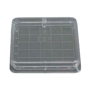 Clear two-piece plastic square gridded culture dish with numbered wells and lid