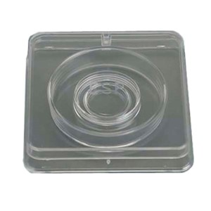 Clear two-piece plastic well in well culture dish with lid